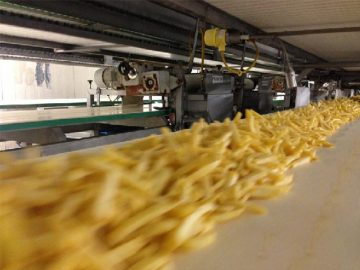 Turkey french fries production line