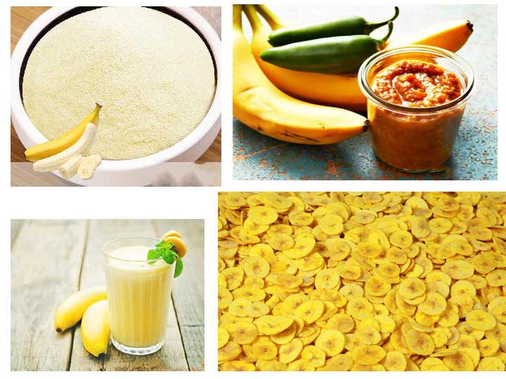 banana processing products