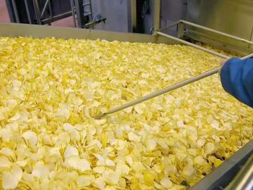 what is potato chips production line price